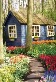 perfecta Fenster: Aktuelles - Gartentipps