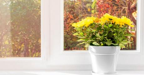 Harmonisch bunt – so holen Sie sich die Farben des Herbstes nach Hause.