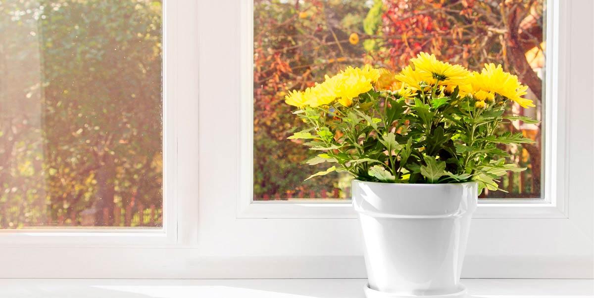Harmonisch bunt – so holen Sie sich die Farben des Herbstes nach Hause