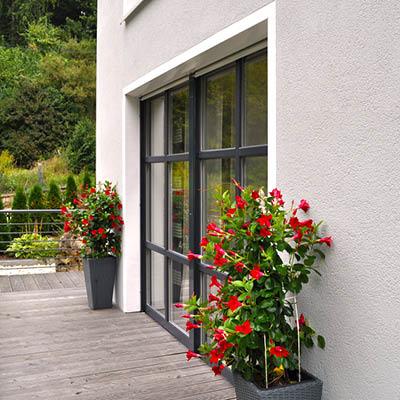 Fenster / Fenstertüren (Balkon- und Terrassentüren)