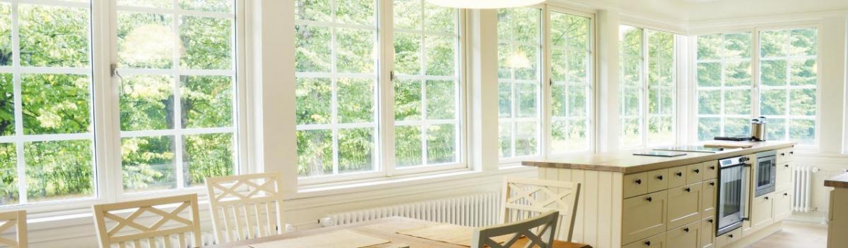 Introbild Fenster