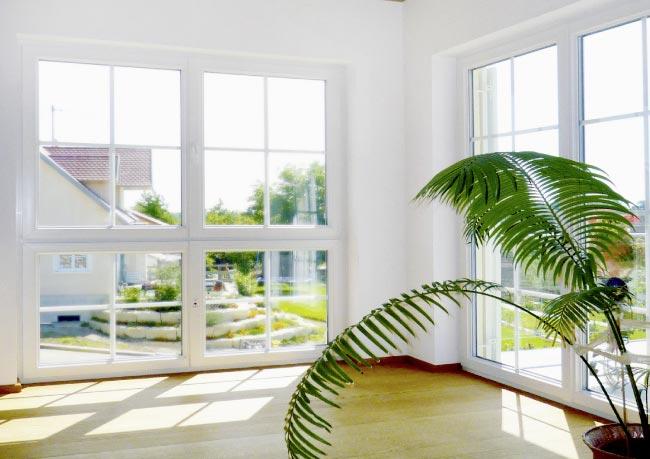 Schöne, pflegeleichte Fenster